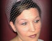 Baby Pink Classic Birdcage Veil