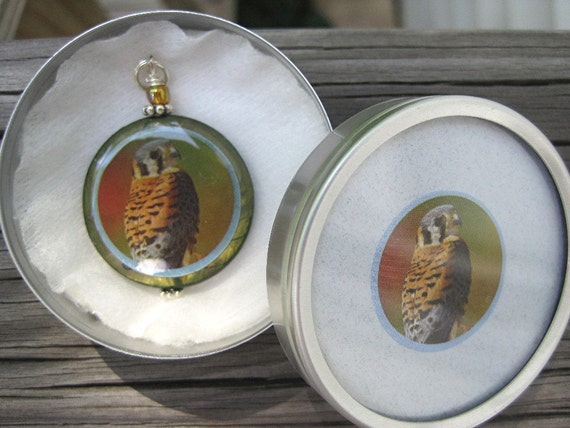 American Kestrel Eagle on Mother of Pearl . Pendant in a matching gift tin.