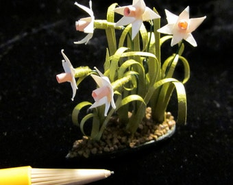 1/12 Scale (Dollhouse) - Pink and White Daffodil Plant - Spring Floral Accent For Your Own Garden or Indoor Fairy Garden