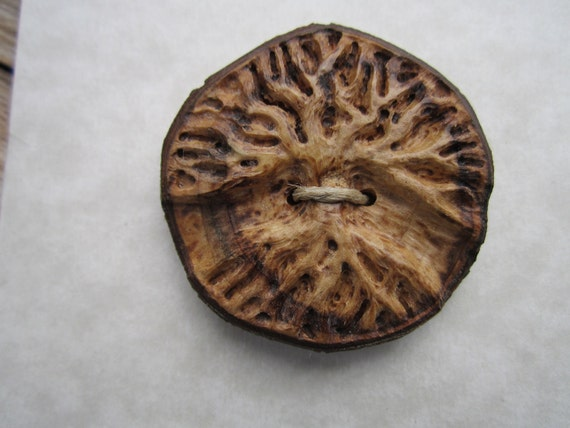 Carved Tree Button- Handmade Wooden Button- in Maple Wood