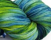 Jackrabbit 6oz hand dyed sock yarn fingering weight, 2ply superwash merino, 170g - Orsino 2