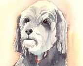 Freddie dog Heaven goes by favor Mark Twain quote note card gift set watercolor archival recycled paper blank inside