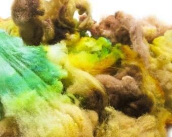 Frog Prince - Spinning Felting Fiber Targhee Fleece Hand Dyed