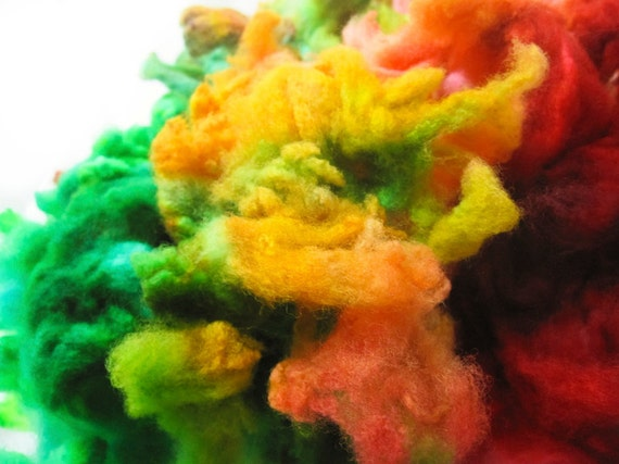 Habanero - Spinning Felting Fiber Targhee Fleece Hand Dyed