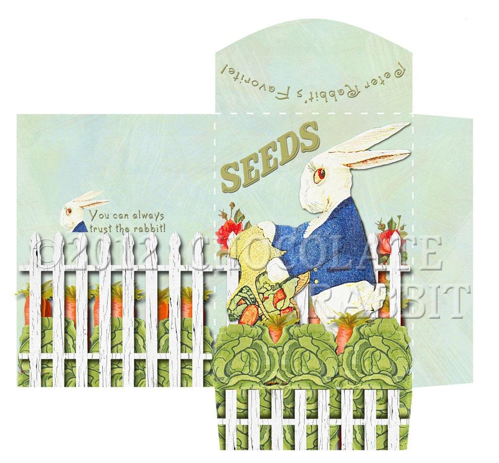 Peter Rabbit Invitations was luxury invitation example