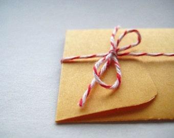 Mini Coin Envelopes - set of 30 in Marigold