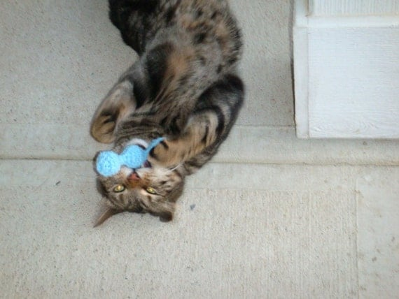 Catnip bell toy for kitty cat