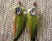Feather Earrings - Olive Green and Brown Feathers, Fall Colors - Autumn Wind