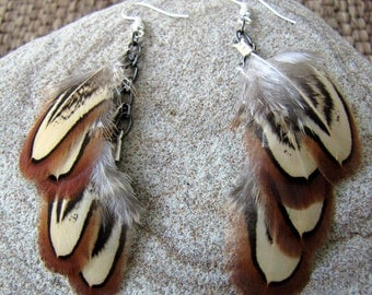 Pheasant Feather Earrings - Short Brown Feather Earrings - Almost Autumn
