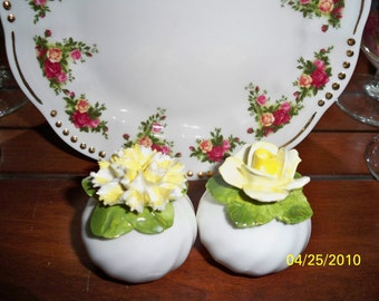 Vintage  Radnor Pair of Flower salt and Pepper Shakers / Porcelain Handmade Salt and Pepper Shakers
