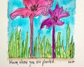 bloom where you are planted - original abstract floral watercolor painting with text