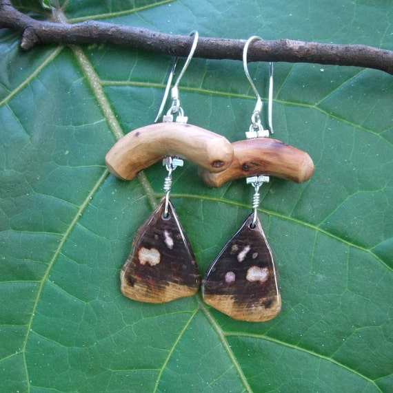 Petrified Wood jewelry - one off a kind wood stone earrings handmade in Australia - a special gift