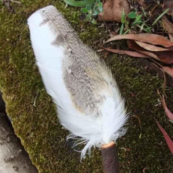 Smudging tool - Barn Owl feather fan