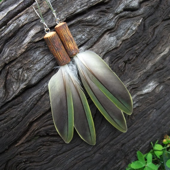 Feather Earrings / Parrot feathers & fig tree - unique and eco friendly