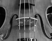 Violin - Music Musician String Orchestra Photography Black and White Classical Opera Symphony Fine Art Metallic Print - 8x10 Photograph