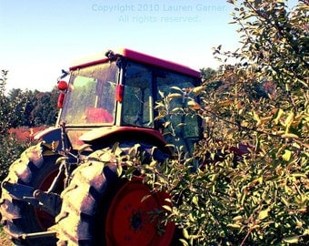Tractor in the Orchard - Farm Apples Photography Blue Orange Green Autumn Spring North Carolina NC Fine Art Lustre Print - 8x10 Photograph
