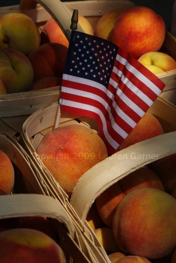 American Peach - Flag Picnic Basket Patriotic Photography Red White Blue Orange Brown Fine Art Print - 8x10 Photograph