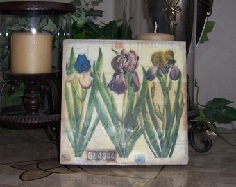 Encaustic beeswax mixed media collage on hardboard canvas Irises