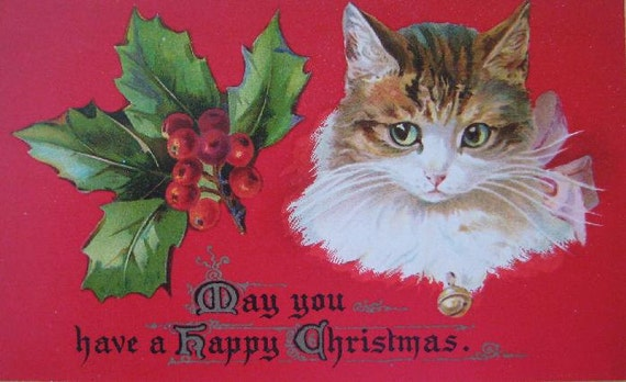 Vintage Christmas Decor Antique Cat Framed Postcard Holly