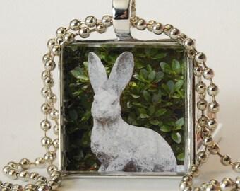 Rabbit Photo Pendant Necklace AC101