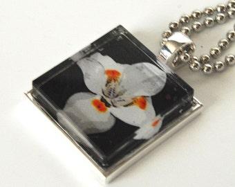 Floral Glass Tile Photo Pendant Necklace XO166