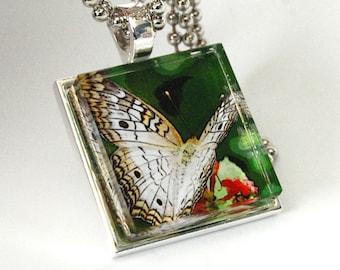 Glass Tile Photo Pendant Necklace Butterfly XO128
