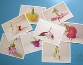 Flower Postcard Set (8x1)