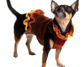 Autumn Dog Sweater Dress