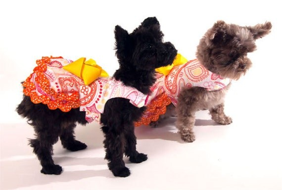 Paisley Dog Dress with Yellow Bow and Orange ruffled trim