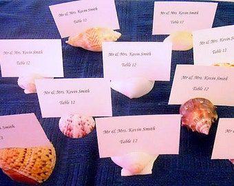 Cut Sea Shell Beach Wedding Seashell Natural Escort Table Place Card Holder