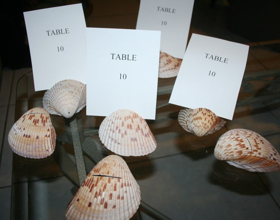 Reserved for Ann  Wedding Reception Table Number Card Holder Natural Seashell