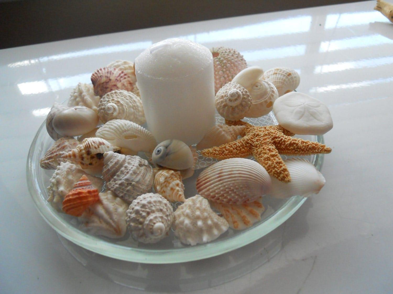 Wedding shower table decorations beach theme seashell and - Beach theme decorating ideas ...