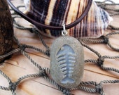 Wishin' on a Fishbone - engraved Beach Stone Pendant - Fish Fossil designed necklace