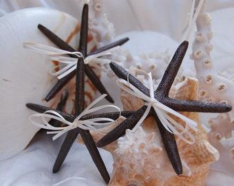 Starfish Ornaments - Set of 3, bronze