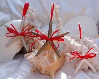 Starfish Ornaments - Set of 3, gold, silver, white