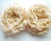 Champagne-cream-gold romantic roses-Set of two-Vintage inspired-Bride,bridesmaid-Brooches, hair clips, shoe clips, flowers for sash.