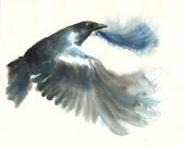 CROW by DIMDIart  Original watercolor painting 10X8inchxxxxAll the animals that you wantxxxx