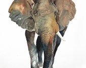 ELEPHANT Original watercolor painting 11X14inch