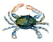 CRAB by DIMDI  Original watercolor painting 10X8inch