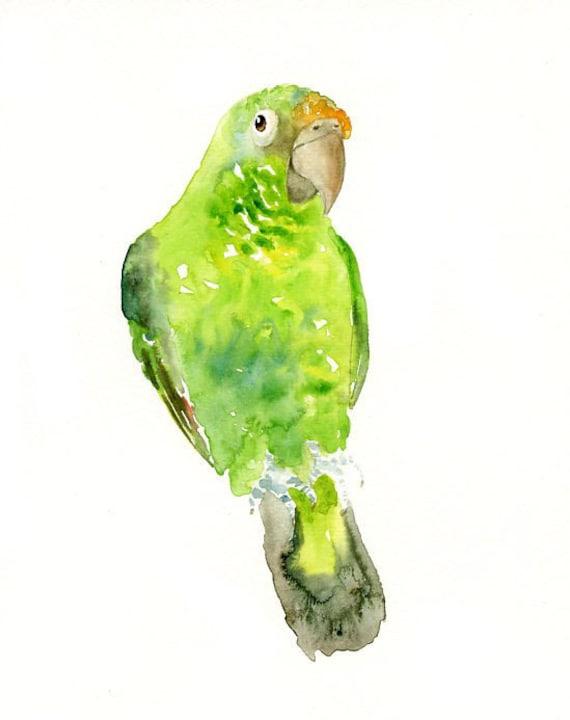 PARROT Original watercolor painting 8x10inch (Vertical orientation)