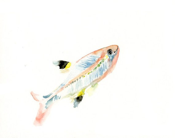 X-RAY FISH by DIMDI  Original watercolor painting 10X8inch
