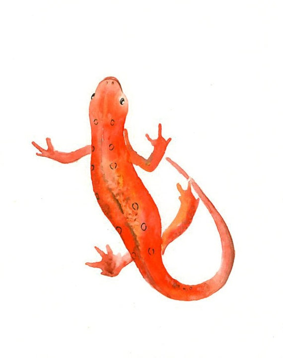 NEWT Original watercolor painting 8x10inch (Vertical orientation)