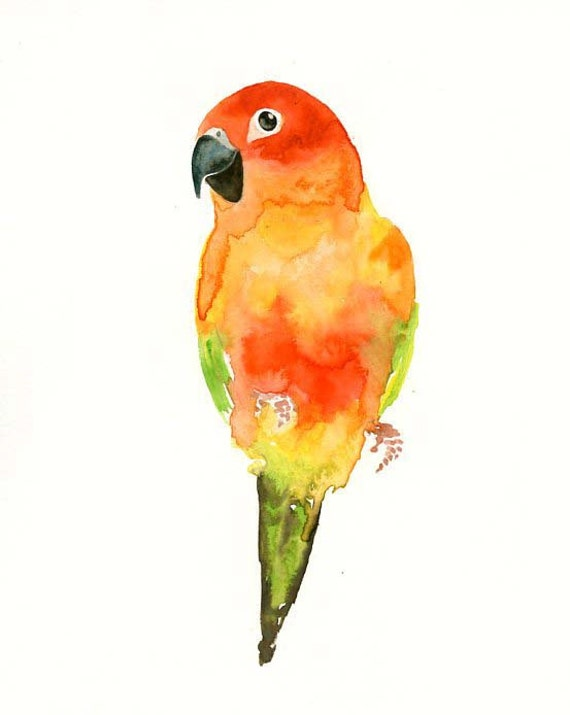 CONURES  by DIMDI Original watercolor painting 8x10inch (Vertical orientation)