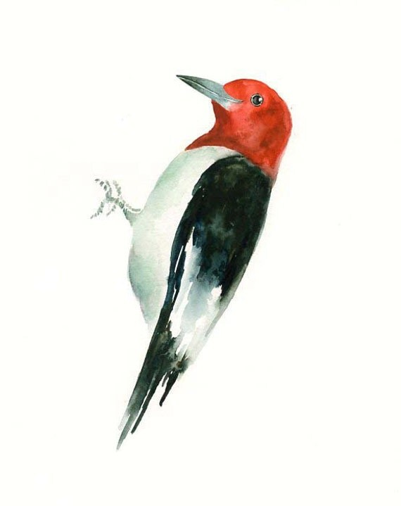 RED headed WOODPECKER by DIMDI Original watercolor painting 8X10inch(Vertical orientation)