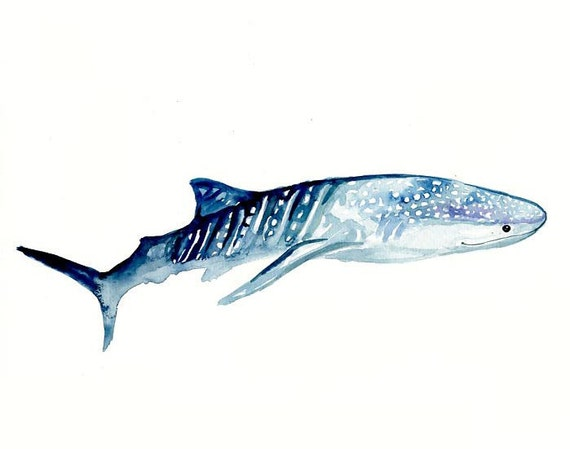 SHARK WHALE by DIMDI  Original watercolor painting 10X8inch