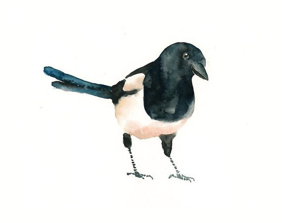 MAGPIE by DIMDI Original watercolor painting 10x8inch