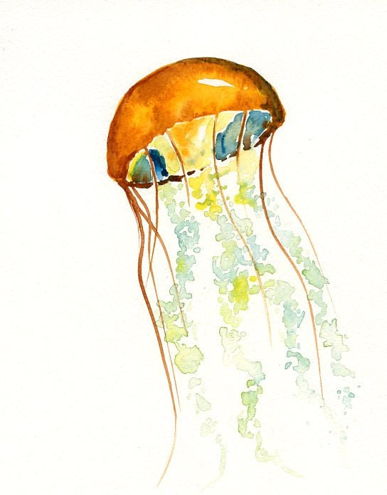 jellyfish by dimdi original watercolor painting 8x10inch