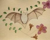 The Naturalists Sketchbook Flower Bat