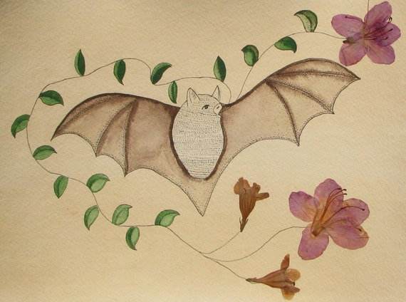 The Naturalists Sketchbook Flower Bat