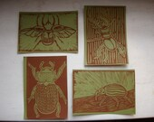Beetle Postcards - Set of Four